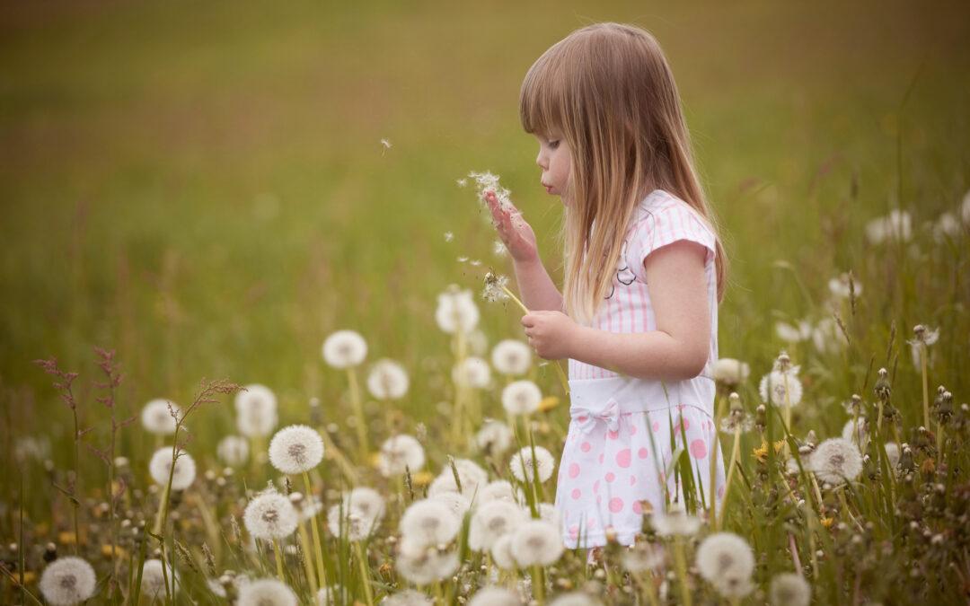 Generations-Shooting mit Pusteblumen und Sauerampfer