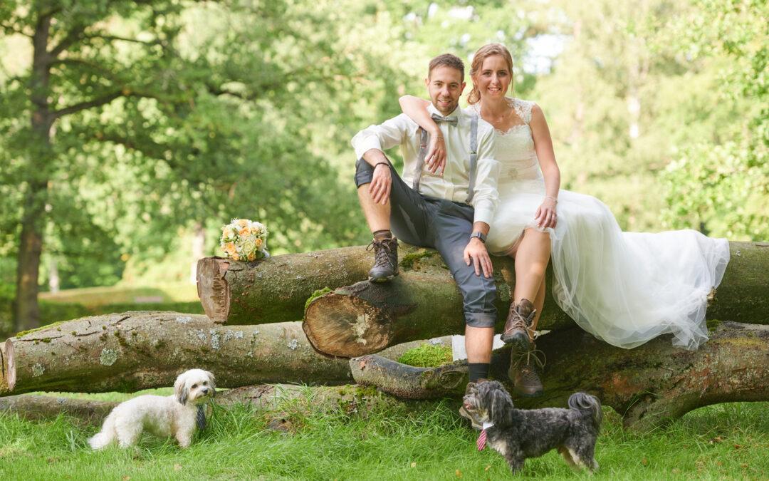 Eine tierische Hochzeit im und um das Gästehaus Wolfsbrunn